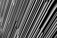Sticks (RFuhlendorf) Tags: wood blackandwhite bw abstract texture lines architecture sticks minimalism