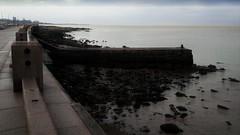 Ebb tide (Lunatic Photographer UY) Tags: sea costa uruguay coast mar seaside mare coastal montevideo bajamar riverplate rambla uy riodelaplata ebbtide mareabaja mvd lunaticphotographercom