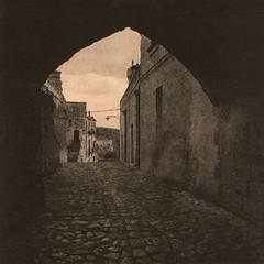 Taking a walk (Antonio's darkroom) Tags: hasselblad kodak trix pyrocathd kentmere artclassic se5 lith moersch catechol