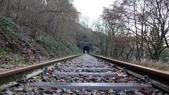 Bahngleise - Wandern auf dem Saynsteig