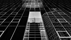 ...adrena.line... (*ines_maria) Tags: blancetnoire blackandwhite bw reflection urbanart urban city skyscraper lookup architecture vienna
