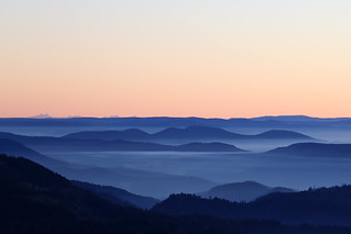Blackforest Winter with Bernese Alps