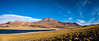 Laguna Miscanti [pano] (josefrancisco.salgado) Tags: 1424mmf28g 3xp atacamadesert chile d5 desiertodeatacama iiregióndeantofagasta lagunamiscanti lightroom nikkor nikon provinciadeelloa reservanacionallosflamencos desert desierto lagoon laguna panorama cl