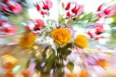 Santa zooms in (Jeannie Debs) Tags: santa zoom roses flowers yellow red coat orange lights sack christmas