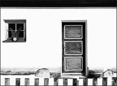 entrance in minimal (claredlgm1) Tags: entrance doors windows bw minimal