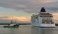 "Docking the  ""Europa 2"".  Port of Timaru.NZ (Bernard Spragg) Tags: ships boats tugboats harbour marine lumixfz1000 ports cruiseships mseuropa2"
