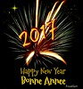 Happy New Year! (clickclique) Tags: fireworks light explosion wishes greetings