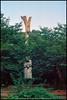 *WHU (WangDingyi) Tags: wuhan wuhanuniversity color china film 135 kodakektar100 nikoncoolscanved olympus om1 50mm