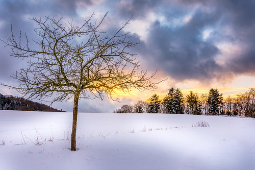 Sunset in the snow
