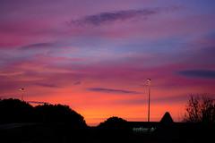 Week 03 / 52 (Pauline Kletti) Tags: challenge52 photo favorite colour color colors soleil sky sun sunshine sundown sunset couleur couleurs coucherdesoleil préférée couleurpréférée favoritecolor