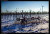 DSC04175-SONY-ILCE-7--FE 55mm F1.8 ZA-ILCE-7-20170108 (Falcdragon) Tags: austria winter snow sonya7alpha sonyzeisssonnarfe1855mmza travel holiday outdoors countryside vineyards wine grapes vines landscape