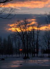 ORANGE ZEST / ZESTE D'ORANGE (BLEUnord) Tags: sunset coucher soleil coucherdesoleil montréal glace ice réflexions reflections orange ciel sky nuages clouds nuageux cloudy partlycloudy partiellementnuageux hiver winter soir evening