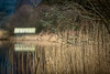 Boathouse, Kinlochard (raymond_carruthers) Tags: reeds lochard trossachs nationalpark kinlochard boathouse lomondtrossachs outdoors scotland