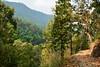 Nepal - Bandipur - Way To Bimalnagar Siddha Cave - 5