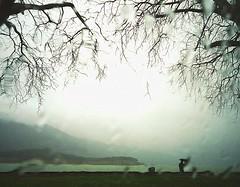 Winter (PattyK.) Tags: winter rain lakeside raindrops february whereilive lakefront mycity winterlandscape ioannina giannena        lakepamvotida