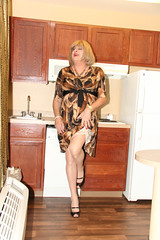 new104540-IMG_0231t (Misscherieamor) Tags: kitchen tv feminine cd motel tgirl transgender mature sissy tranny transvestite slip showing crossdress ts gurl tg travestis prettydress travesti travestie m2f xdresser tgurl