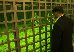 Praying on Khomeini grave, Iran (Eric Lafforgue) Tags: grave iran khomeini    iro