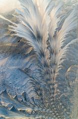 20140218-DSC_0034 (shmikov) Tags: frostwork