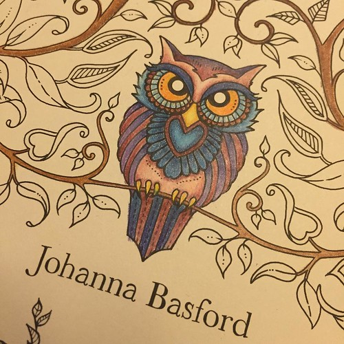 I Think This Owl From The Title Page Of Enchanted Forest Is Probably