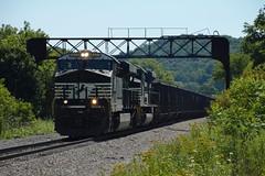 NS 8059 Custer Signal Bridge Jewett Run-Through Coal Loads 576 OHCR 8/2/15 (Poker2662) Tags: bridge ns coal signal loads jewett custer 576 runthrough 8059 8215 ohcr