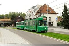 BVB Be 4/4 482 in Weil am Rhein, Hauptstrae DFC_3098 (foto_DM) Tags: am tram erffnung basel rhein strassenbahn weil zoll grenze kleinhningen motorwagen grenzberganng hiltalingerbrcke weilfreidlingen