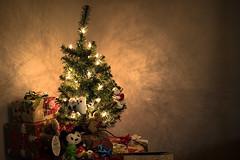 Mini Xmas Tree (Antoine Grelin) Tags: christmas tree nevada las vegas 2016 canon photography 7dmii
