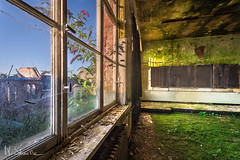 You should be going to school. You know, that kind of stuff. (S-ka..) Tags: abandoned urbex school decay moss ruby5