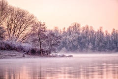 Cold dawn at the river 1 (PascallacsaP) Tags: river maas meuse maastricht limburg netherlands water dawn morning early cold mist fog reflection trees shore sunrise orange winter kleineweerd washland foreland holme watermeadow freezing frozen