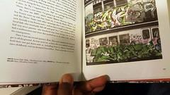 """CHAZ WINDOW DOWN ON BROADWAY."" (1983) (""OLDSCHOOL SUBWAY GRAFFITI WRITER!"") Tags: graffiti walls priz tsf prizone 1980s subwaygraffiti broadway writers yards nyc trains tds tmt pz prz prizmatic prizzypriz prizo prizmagicacity prizzy prizmagic prizma prizm prisms prismpriz prismone prismaticacity prisma prismatic prism tsfcrew"