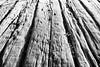 sleepers 1bw (photoautomotive) Tags: newhaven east sussex england uk europe exposure wood harbourside portside