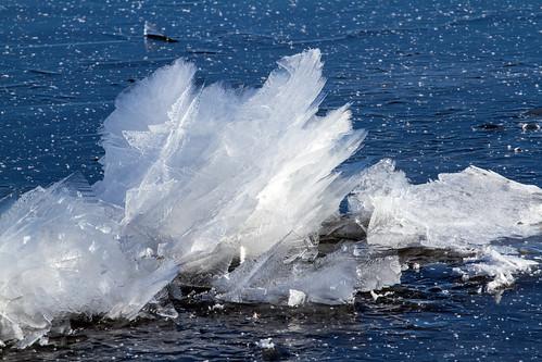 sculpture de glace, sur le fleuve St-Laurent