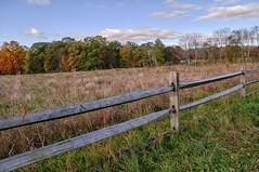 A Fall Field (brev99) Tags: niksoftware hdrefexpro landscape fence mendham nikdfine luminar d90 sigma1770os field
