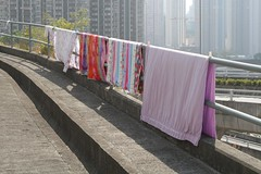 Laundry drying on a fence in a park, despite signs telling people not to (Marcus Wong from Geelong) Tags: kowloonbay hongkong hongkong2013