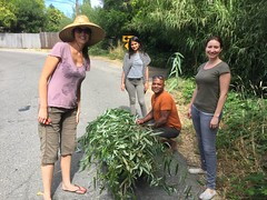 Willow Gatherers (marylea) Tags: cameraphone jul15 2016 wedding preparations california