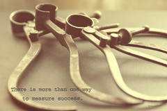 The Measure of Success (Jewel Appletor aka Karalyn Hubbard) Tags: circumferencecalipers calipers treasures tool measure industrial pastera navalmeasuringtool steel precisioninstrument art inspiration inspirationalquote