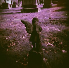 If I got rid of my demons, Id lose my angels. (liquidnight) Tags: autumn film broken cemetery graveyard angel oregon analog mediumformat portland wings lomo lomography purple toycamera surreal statues headstones angels mementomori pdx dreamy analogue tombstones vignetting dreamscape filmphotography pouva mtcalvarycemetery pouvastart mountcalvarycemetery lomochrome lomochromepurple lomochromepurplexr100400
