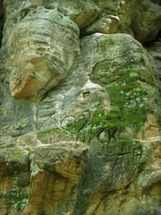 Minneopa State Park (Trevor Q Goyette) Tags: travel usa nature minnesota america outdoors us unitedstates hiking northamerica mankato stateparks minneopastatepark