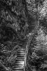 Stairs (ShimmyGraphy) Tags: bw white black nature rock stone stairs germany de deutschland natur treppe fels stein schwarzwald abstrakt allerheiligen treppen badenwürttemberg 2015 gh4 oppenau schwarzwaldhochstrase shimmygraphy