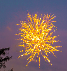 The Gold Burst (Jun deCix) Tags: eos gold lights fireworks explosion