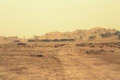 Morocco: Increasing of hairy heat waves