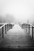Hydrométéore hivernal I (CrËOS Photographie) Tags: winter hiver fog brouillard pont birdge perspective calme calm lines lignes solitude loneliness paysage landscape givre frost