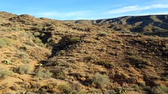 20161210_085615 (Ryan/PHX) Tags: trailrunning bct blackcanyontrail arizona desert outdoors ultrarunning aravaiparunning