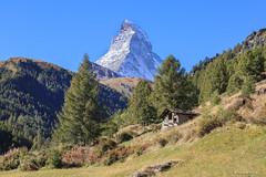 Matterhorn (francoispobez) Tags: matterhorn zermatt switzerland cervin suisse schweiz moutain montagne neige snow glacier meleze chalet alpage valais wallis