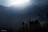 Jibhi, Himachal Pradesh (Bharat Baswani) Tags: jibhi himachal pradesh hills mountains himalayas rays sun trees mist fog winter sunrays lansdscape
