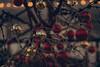 Seasonal greetings (Edita Ruzgas. Thanks for your visit.) Tags: christmas holiday season decorations toys new year edita ruzgas nikon d7200 winter decorated branches seasonal evening night outside tree greetings red gold yellow closeup dof bokeh