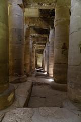 Columns in the Temple of Seti I (Chris Irie) Tags: abydos egypt seti columns