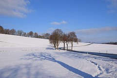 winter... (JoannaRB2009) Tags: winter snow white blue path road sky clouds nature tree trees landscape view forest hill hills light sunlight shadow hesse hessen nordessen northhesse germany deutschland