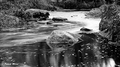 Le Garo - Plouguin (patrick_milan) Tags: garo plouguin pose longue water eau river ruisseau miror reflection