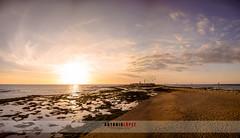 Playa de la caleta 17.01.17 (Antonio López Fotografía) Tags: cadiz sol nikon la caleta españa andalucia