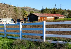 Theme: Country (andieharsany) Tags: barn country backcountry theme1 sanjose california whitefence fence